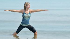 Hatha - What is Hatha-Vinyasa Yoga